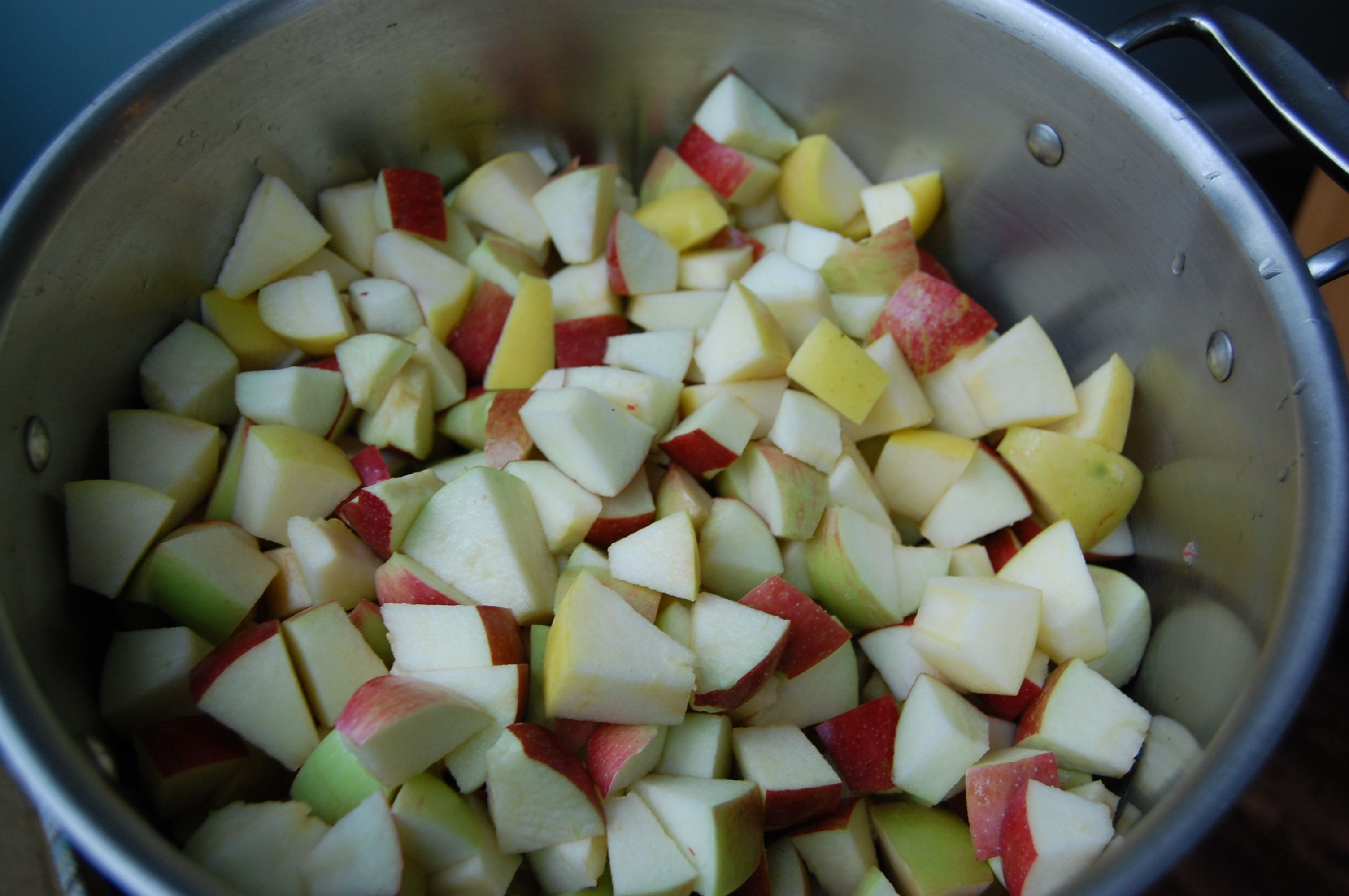 it is apple season here in the carolinas making homemade applesauce is ...